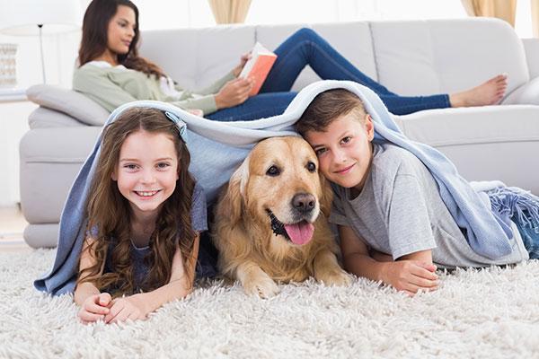 Cani e Bambini: consigli per un'intesa spensierata e felice